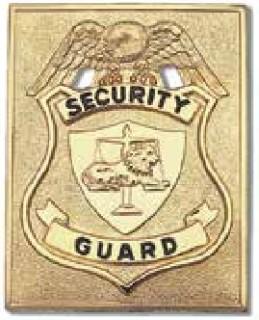 Large Rectangular Security Guard, Nickel, Breast-