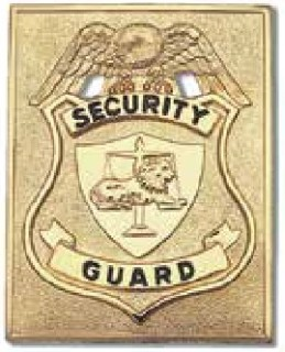 Large Rectangular Security Guard, Gold-