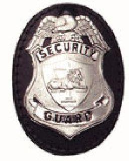 Oval clip on badge holder-