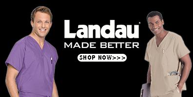 landau_slide.png
