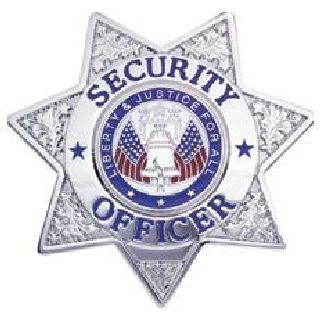 Security Officer - 7 Pt Star - Traditional - Gold-Hero's Pride