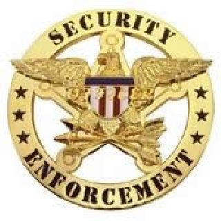 Security Enforcement - Circle/Eagle - Traditional - Nickel-
