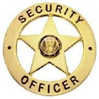 Security Officer - Circle/Star - Traditional - Gold-Hero's Pride
