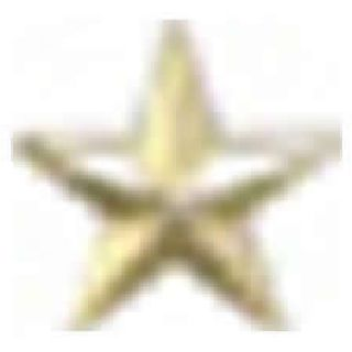 "Pairs - Single 7/32"" Star -1 Clutch - Nickel-"