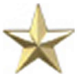 "Pairs - One 1/2"" Star - Gold-Hero's Pride"