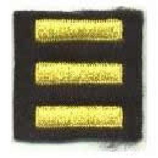 Service Bars - Medium Gold On Black Felt - 1 X 1/4""