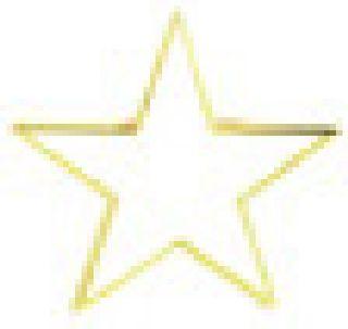 Honor Stars - White-Hero's Pride