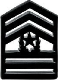 Pairs - Command Sgt Major - Subdued/Black-
