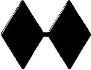 Pairs - Lt Col (Double Diamond) - Subdued/Black-