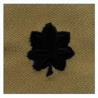 Pairs - Cloth Rank Insignia - Desert - Lt Col-Hero's Pride