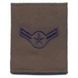 Each - Gortex Rank Insignia - Airman - Subdued-
