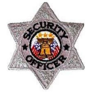 """Security Officer - 6 Pt Silver Star - 3 X 3""""-"""