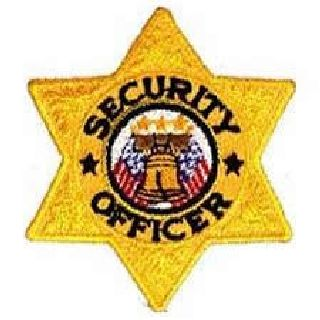 Security Officer - 6 pt Gold Star - 3 X 3""