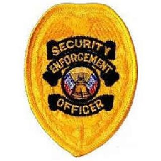 "Security Enforcement Officer - Gold Badge - 2-3/8 X 3-1/2""-"