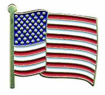 U.S. Flag Pin-wavy