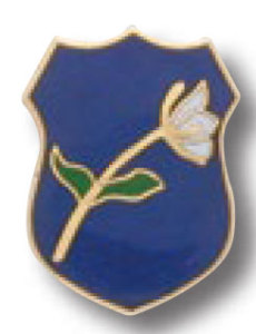Memorial Pin-
