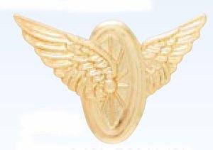 Motorcycle Wings-
