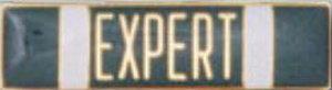 Expert-
