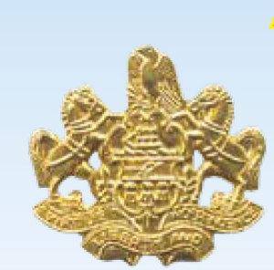 Penna Coat of Arms Med-Premier Emblem