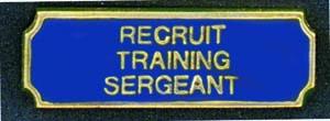 Recruit Training Sergeant