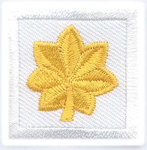 1 1/4 x 1 1/4 Major - Mini-Premier Emblem