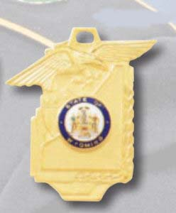 Commendation Medal PM-21-Premier Emblem