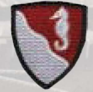 36th Engineer Group-
