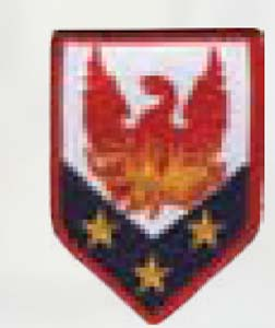 110th Man Enhan Bde-Premier Emblem