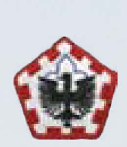 555th Engineer Gp-Premier Emblem