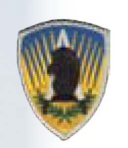 650th MI Gp-Premier Emblem
