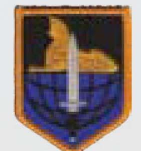 902nd Mil Intel Gp-Premier Emblem