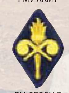 Chemical Trn School-Premier Emblem