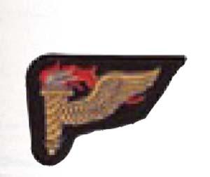 Pathfinder Patch Mer-