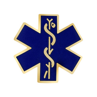 Star of Life Pin-