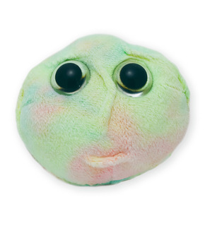 Giant Microbes®-Prestige Medical