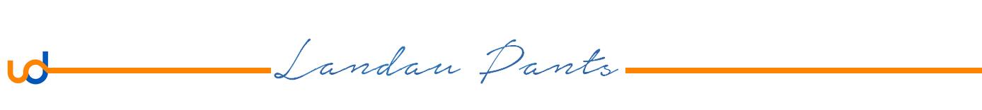 Landau-Scrub-Pants-Break.png