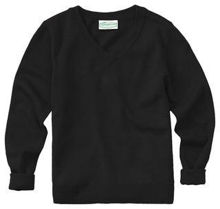 Youth Unisex Long Sleeve V-neck Sweater-