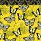 Bonjour Butterfly (BUBE)