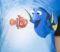 Dory And Nemo (FNDN)