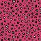 Ladybug Leopard (LBLO)