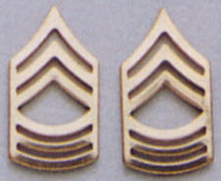 Rothco Master Sergeant Polished Insignia-
