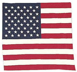 Rothco U.S. Flag Bandana-334557-Rothco