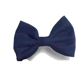 Hair Bow-Samuel Broome