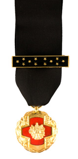 MEDAL OF HONOR POSTHUMOUS-Somes