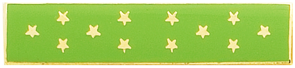 MEDAL OF HONOR (GREEN)-Somes