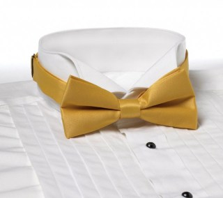 Solid Color Polyester Adjustable Band Bow Tie-