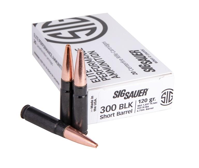 Sig Sauer 300BLK, 120GR, SBR SOLID COPPER BLK CASE-