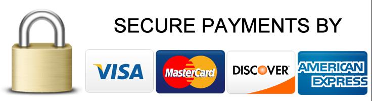 securepmtslogo.png