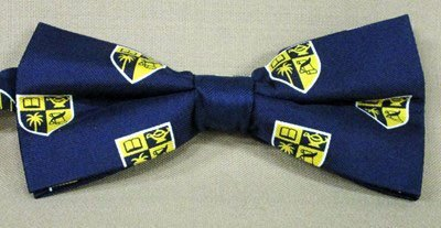 Bat Bow Tie  (Tie Yourself) Woven Polyester-Silk Blend with Custom Logo