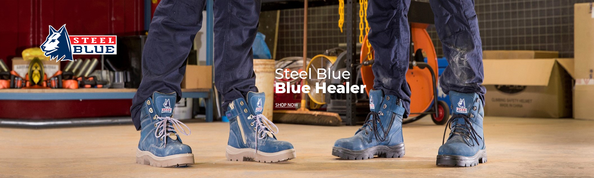steelblue blue healer
